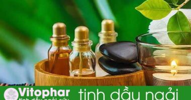 Tác dụng của 10 loại TINH DẦU đang bán trên thị trường hiện nay!