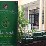Dầu ngải Vitophar sinh hoạt cùng hội Đông y tỉnh Hà Nam!